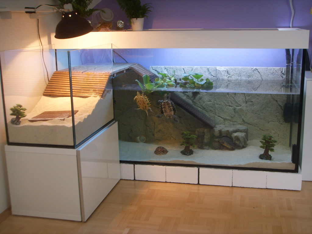 Аквариум для красноухих черепах своими руками фото