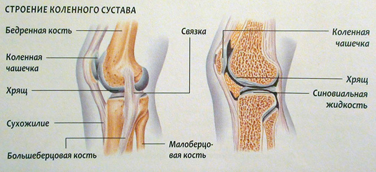 Препараты для лечения суставов после травмы